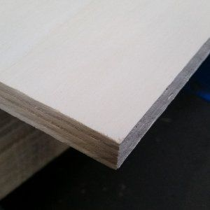 Populieren multiplex wit gegrond 12mm 250x122cm InterPrime®