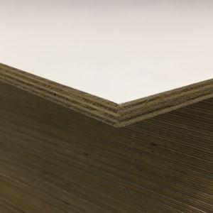 Populieren wit exterieur 10mm 310x153cm
