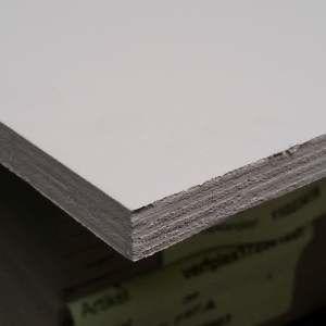 Multiplex 22mm grijs gegrond WBP 250x122cm (VerfPlex®)